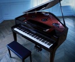 Klavierspiel, das Pianisten Grenzen überwinden lässt.  Über die Freude, beim Spiel etwas völlig Neues entstehen zu lassen ...